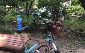 都立善福寺公園